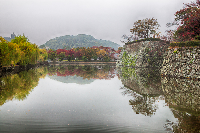 Autumn is very much visible near the castle walls in Himeji