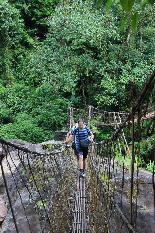 We cross another bridge on the trail on the way back (picture courtesy: Medarisha Lyngdoh)