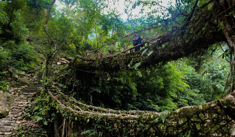 Trekking to see the Root Bridges of Nongriat
