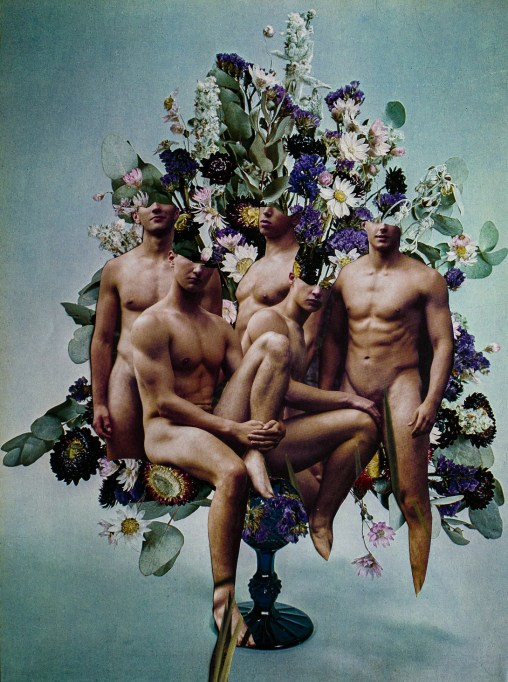Four naked men edited over flowers as part of Silvio Severino and the Gay Project digital exhibition