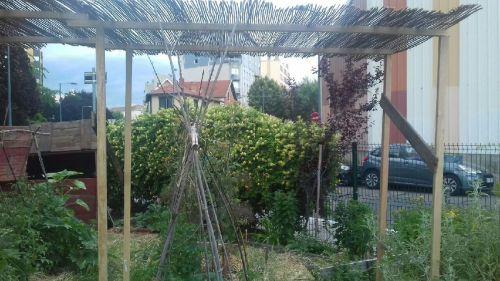 Photo du jardin prise par Alicia Arnauld