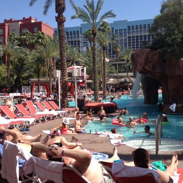 The Flamingo Go Pool