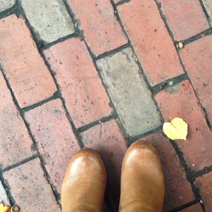 Fall in Boston!