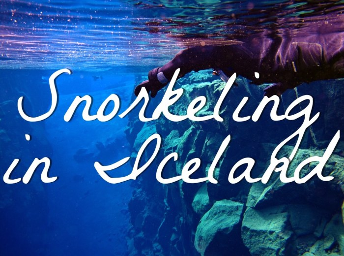 Snorkeling in Iceland with Dive.is