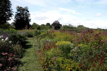 Taking the pollinator garden path in Little Compton