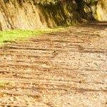 武庫川渓谷ハイキング