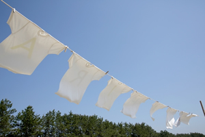 洗濯洗剤選び方