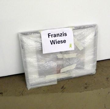 Franzis Wiese