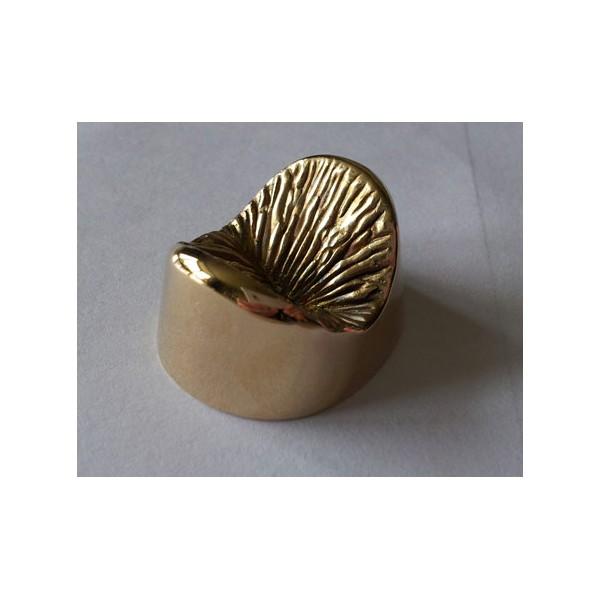 solid-bronze-anus