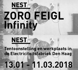 Nest_2018_jan_a