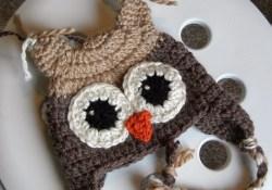 Crochet Owl Hat Pattern Knotty Knotty Crochet Hoot Hoot Owl Hat Free Pattern