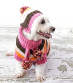 Dog Sweater Crochet Pattern Knitted Dog Sweater Patterns For Large Dogs Pet Knits Dachshund Coat