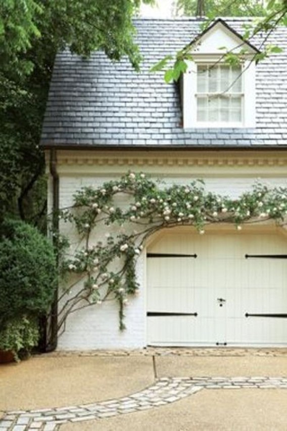Beautiful Facades With Vines And Climbers 13