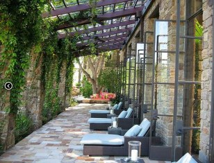 Beautiful Facades With Vines And Climbers 29