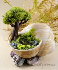 Magnificient Diy Fairy Garden Ideas With Plants 03