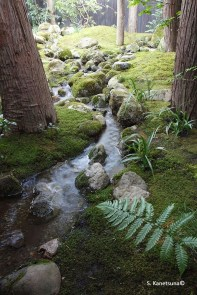 Cute Japanese Garden Design Ideas 40