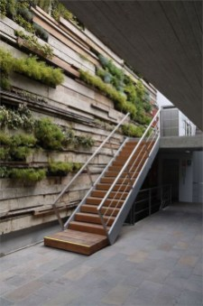 Amazing Wall Outdoor Design Ideas 35