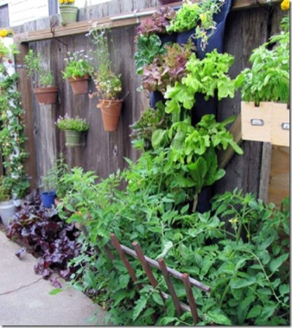 Cute Garden Fences Walls Ideas 38