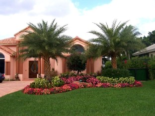 Cute Palm Gardening Ideas For Front Yard 24