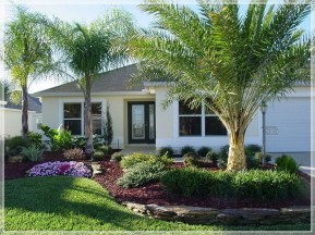 Cute Palm Gardening Ideas For Front Yard 29