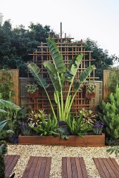 Cute Palm Gardening Ideas For Front Yard 42