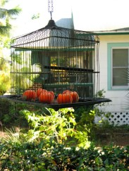 Incredible Autumn Decorating Ideas For Backyard 11