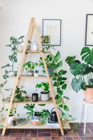 Magnificient Indoor Decorative Ideas With Plants 31