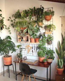 Magnificient Indoor Decorative Ideas With Plants 51