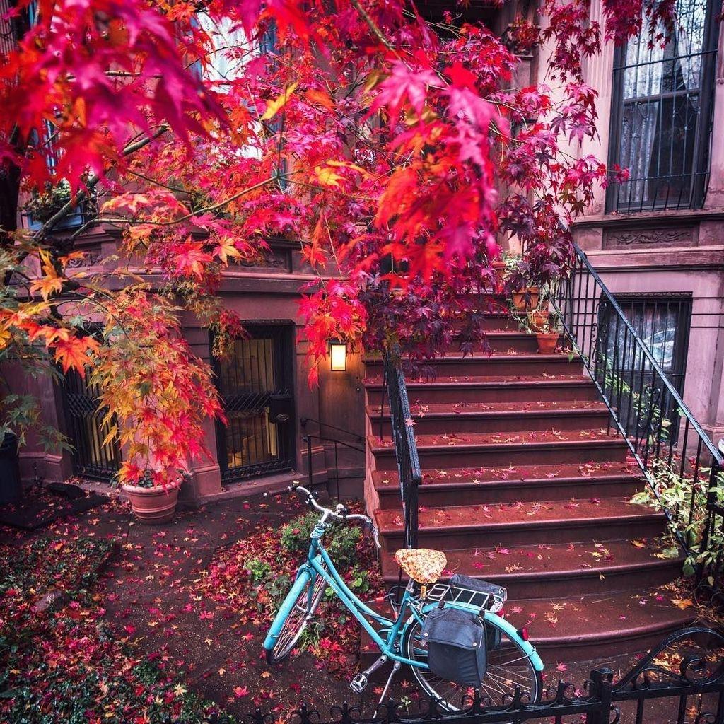 Best Ideas To Add A Bit Of Phantasy For Garden 20