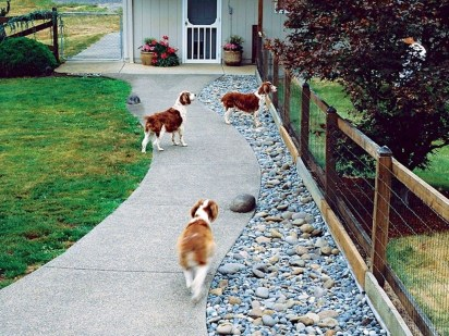Comfy Diy Backyard Projects Ideas For Your Pets 02