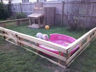 Comfy Diy Backyard Projects Ideas For Your Pets 37