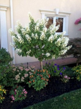 Newest Front Yard Landscaping Design Ideas To Try Now 17