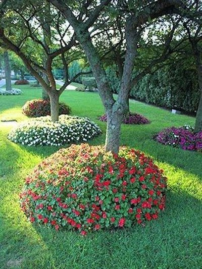 Adorable Flower Beds Ideas Around Trees To Beautify Your Yard 12