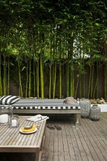 Dreamy Bamboo Fence Ideas For Small Houses To Try 49