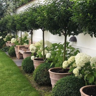 Gorgeous Backyard Landscaping Ideas For Your Dream House 16