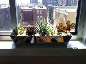 Lovely Window Design Ideas With Plants That Make Your Home Cozy 17