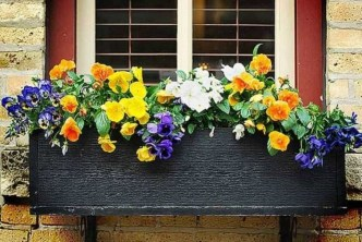 Lovely Window Design Ideas With Plants That Make Your Home Cozy 30