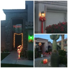 Pretty Christmas Front Yard Landscaping Ideas09