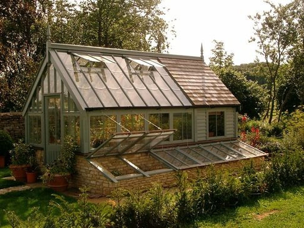 Awesome Shed Garden Plants Ideas24