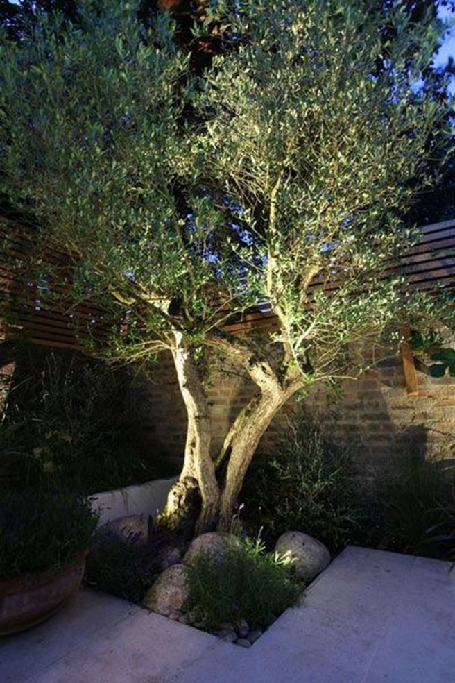 Beautiful Light Design Ideas For Garden24