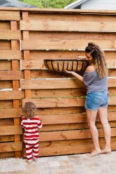 Inspiring Privacy Fence Ideas09
