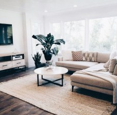 Perfect Apartment Living Room Decor Ideas On A Budget01