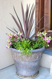 Wonderful Flower In Pots Ideas For Your Window11