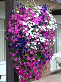 Wonderful Flower In Pots Ideas For Your Window12