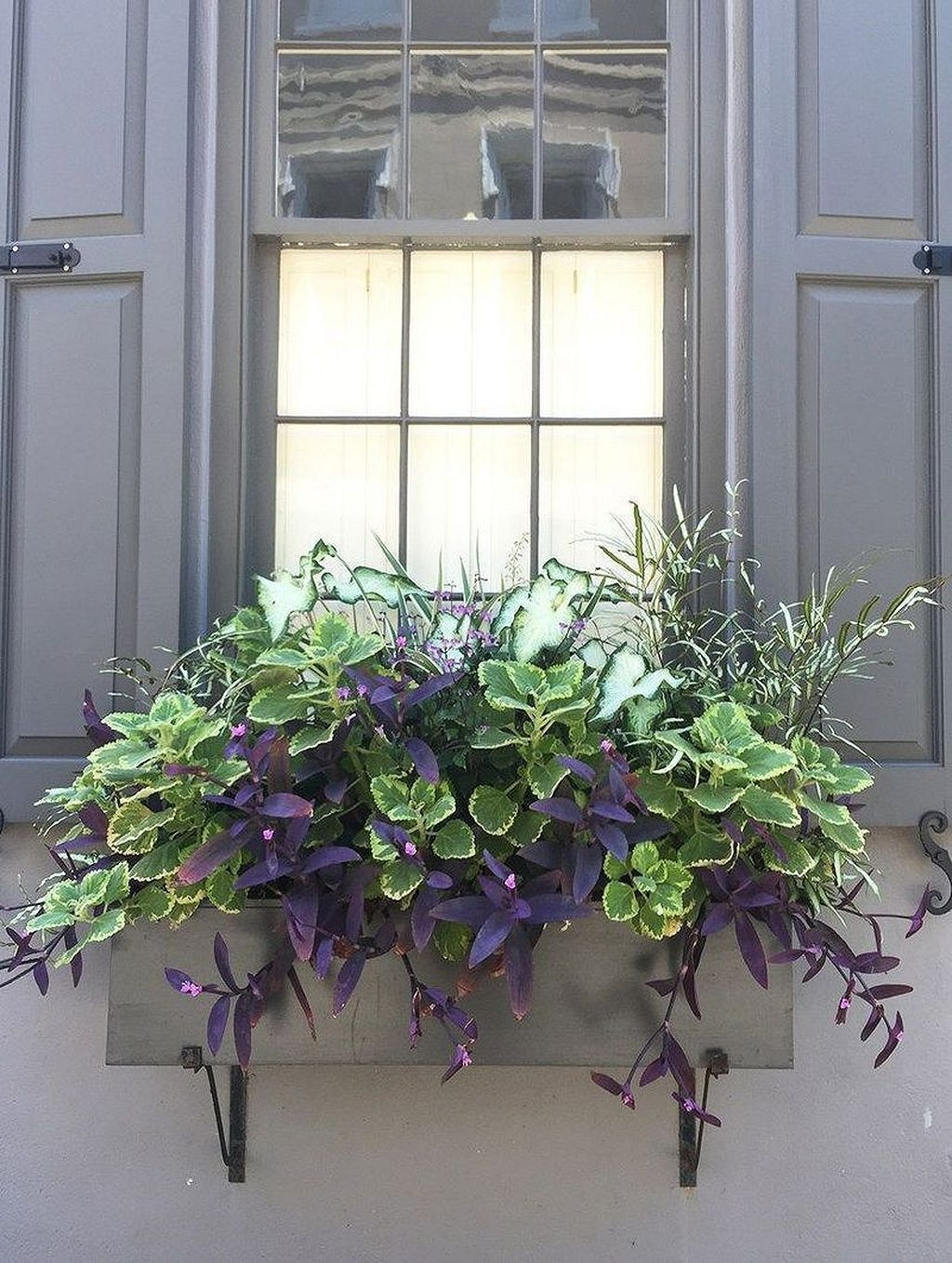 Wonderful Flower In Pots Ideas For Your Window30