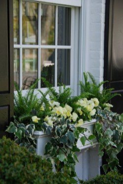 Wonderful Flower In Pots Ideas For Your Window32