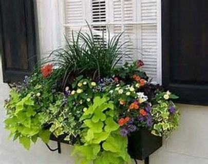 Wonderful Flower In Pots Ideas For Your Window34