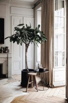 Awesome Tree Interior Design Ideas To Apply Asap11