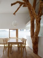 Awesome Tree Interior Design Ideas To Apply Asap27
