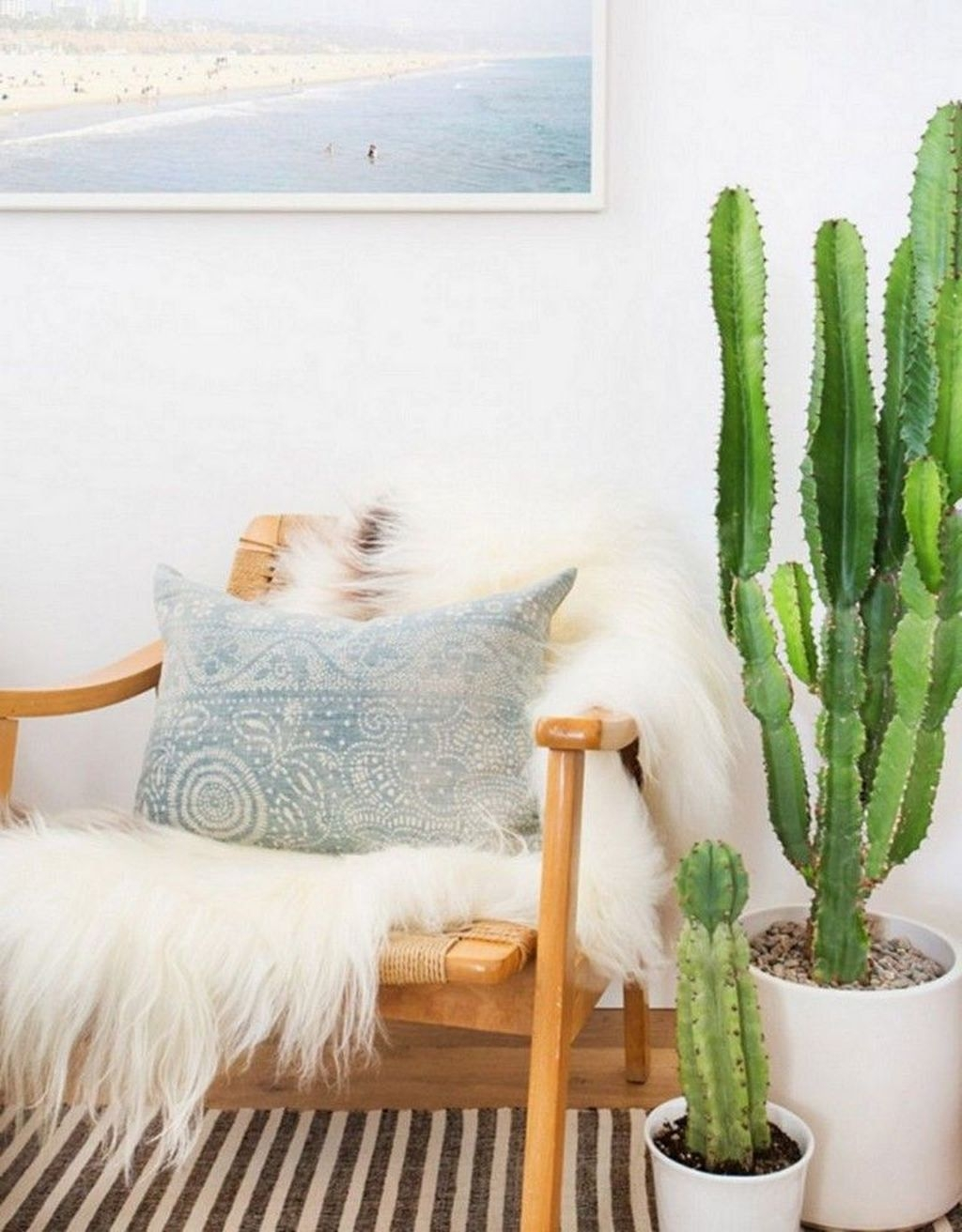 Cool Small Cactus Ideas For Interior Home Design28